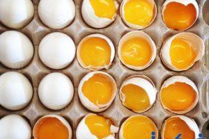 دلالات تفسير رؤية البيض فى الحلم