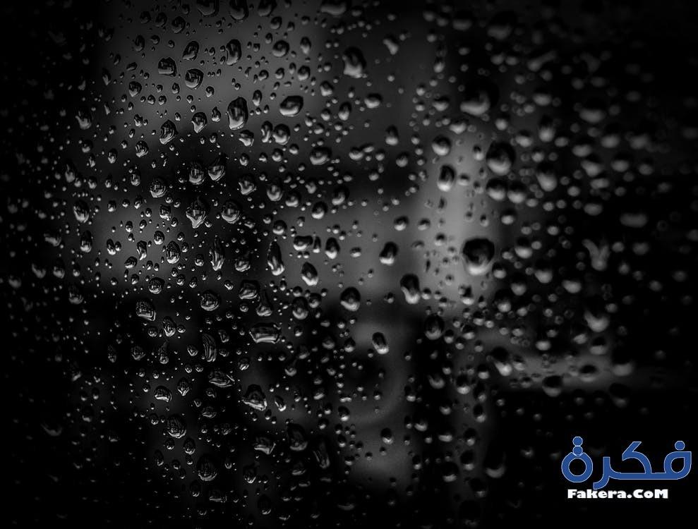 6b1548a94 ... كانت دلالة على ثقتها بنفسها وقوة شخصيتها واعتزازها وفخرها بنفسها ، أما  إذا كانت ترتدي فستانًا ذات لون أسود في حفلة ما فهو إشارة للحزن والهم والقلق.