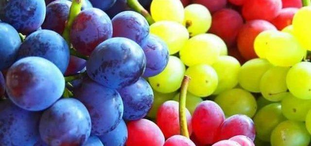 تفسير حلم اكل العنب فى المنام