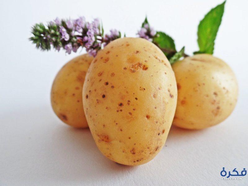 تفسير حلم رؤية البطاطس (البطاطا)