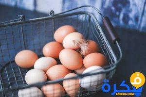 تفسير حلم جمع البيض