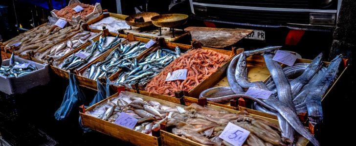 تفسير حلم السمك المطبوخ