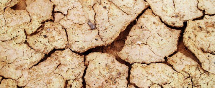 تفسير حلم المشي في الطين