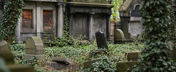 تفسير حلم القبور
