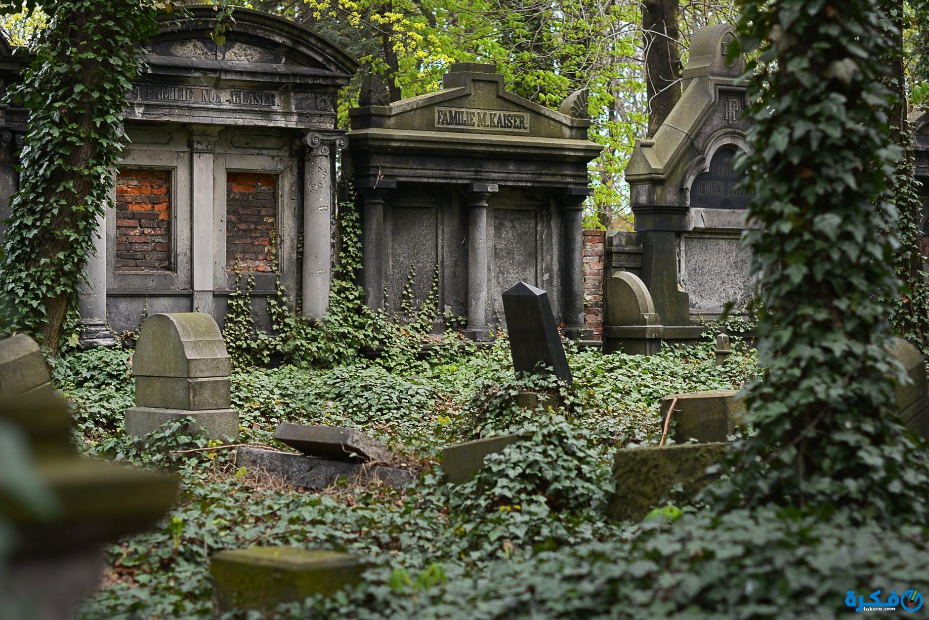 تفسير المشي في المقابر