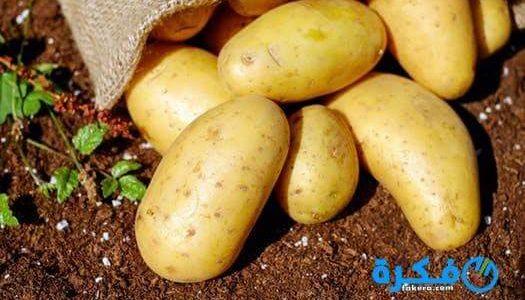 تفسير رؤية شراء البطاطس