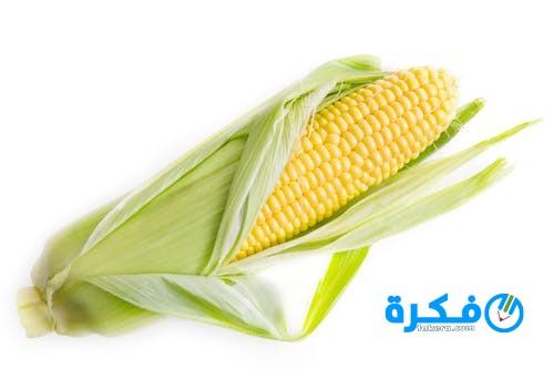 فوائد الذرة الصفراء و أضرارها