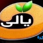 تردد قناة ديالي 2019