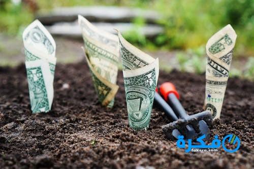 تفسير حلم جمع المال من التراب