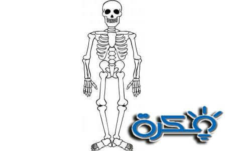 تفسير رؤية الهيكل العظمي في المنام
