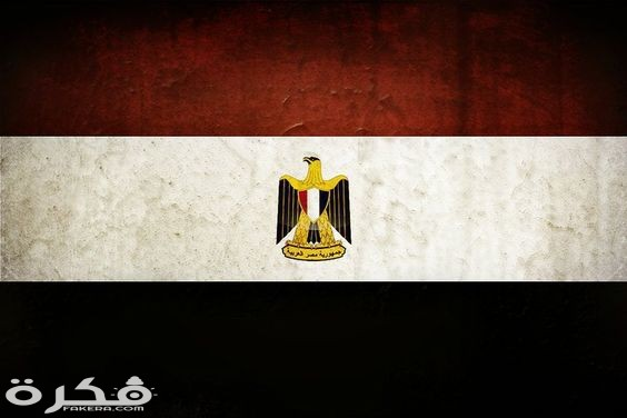 صور علم مصر 2021