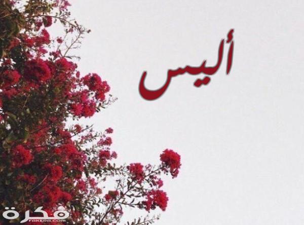 معنى اسم أليس وشخصيتها وحكم التسمية في الاسلام موقع فكرة