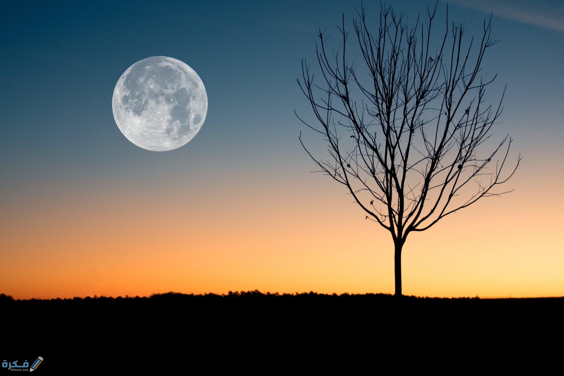 تفسير حلم القمر قريب من الارض موقع فكرة