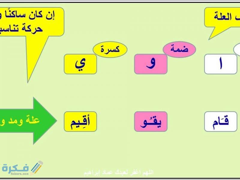 شرح درس حروف العلة في اللغة العربية للاطفال
