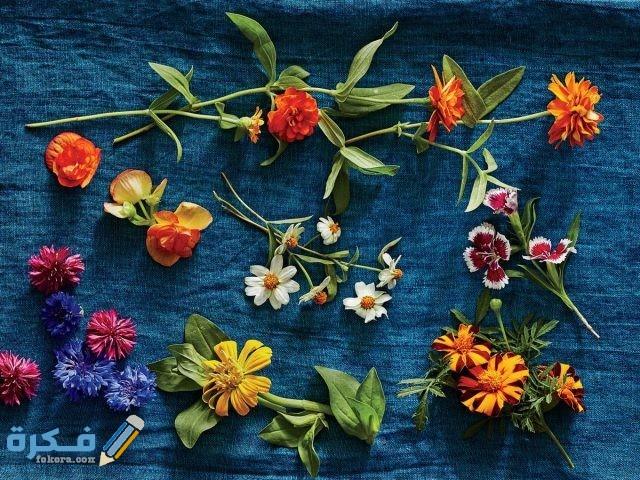 اسماء الزهور الصالحة للاكل