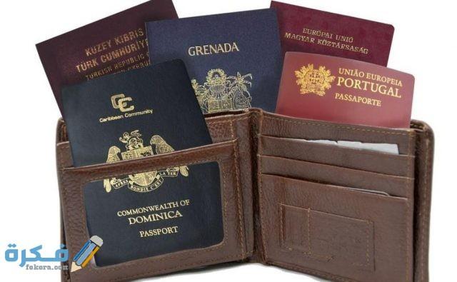 هل تسمح مصر بتعدد الجنسيات؟