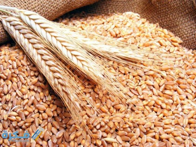 تفسير حلم غربلة القمح في المنام