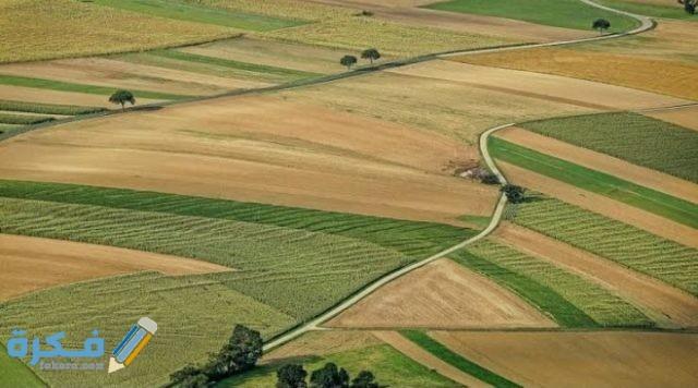 ما اسم برنامج حساب مساحة وحدة الأراضي الغير منتظمة
