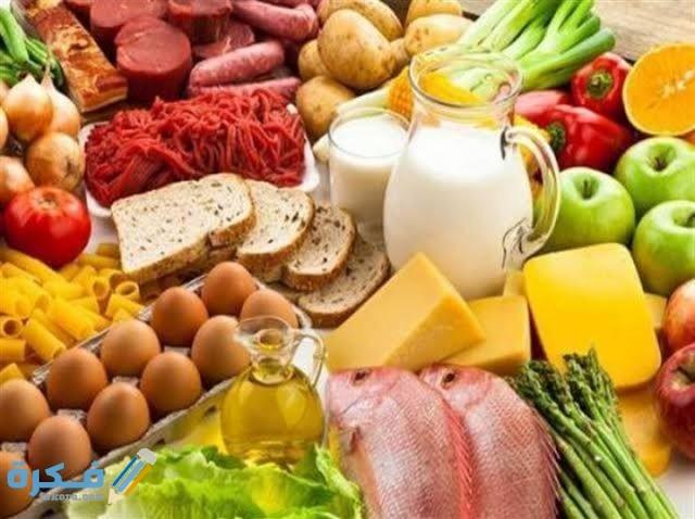 تجارب رجيم البروتين الناجحة