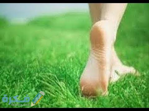تفسير رؤية الساق في المنام للعزباء او للمتزوجة او للحامل