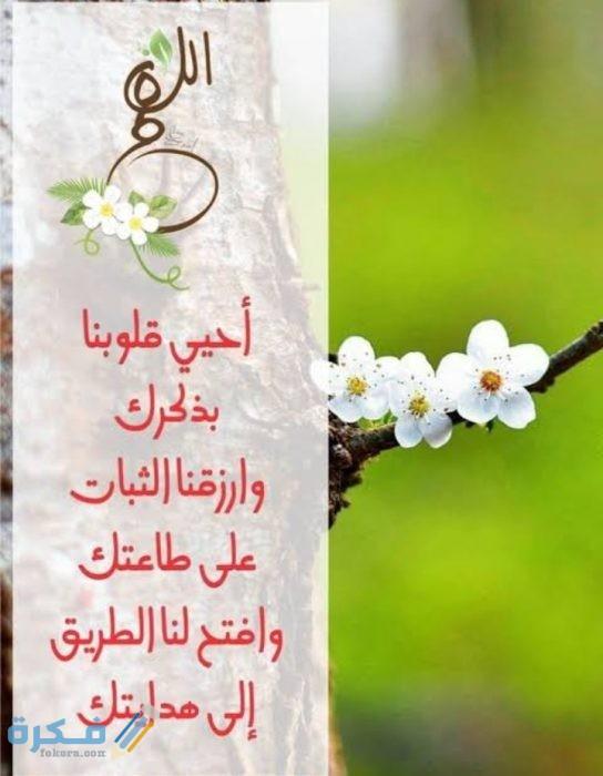 اللهم أحي قلوبنا بذكرك وارزقنا الثبات على طاعتك