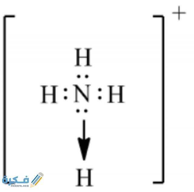 ارسم تركيب لويس لأيون nh4 كيمياء 2 ثانوى