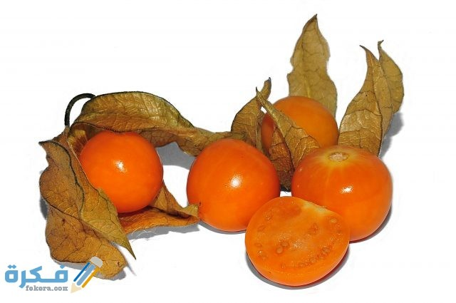 فاكهة الحرنكش