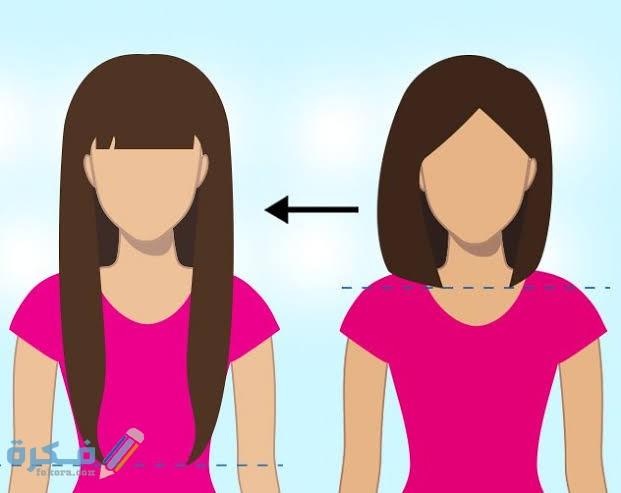 كم نسبة طول الشعر في الشهر
