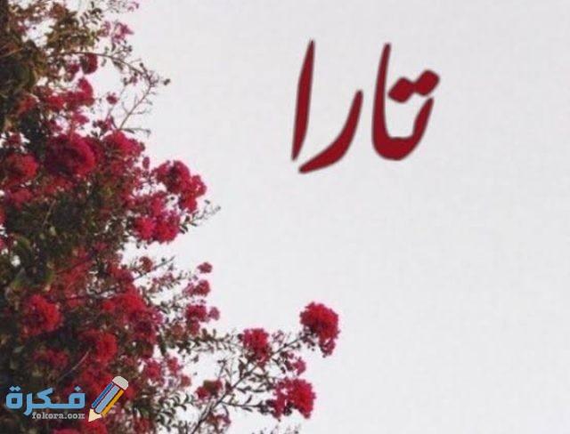 معنى اسم تارا Tara وشخصيتها وحكم التسمية في الاسلام موقع فكرة