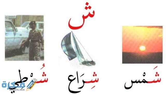 اسم جماد بحرف ش الشين موقع فكرة